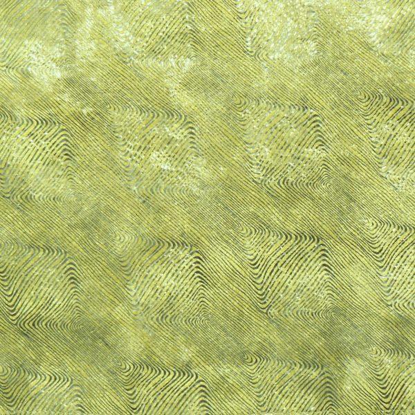Eau Douce Lichen