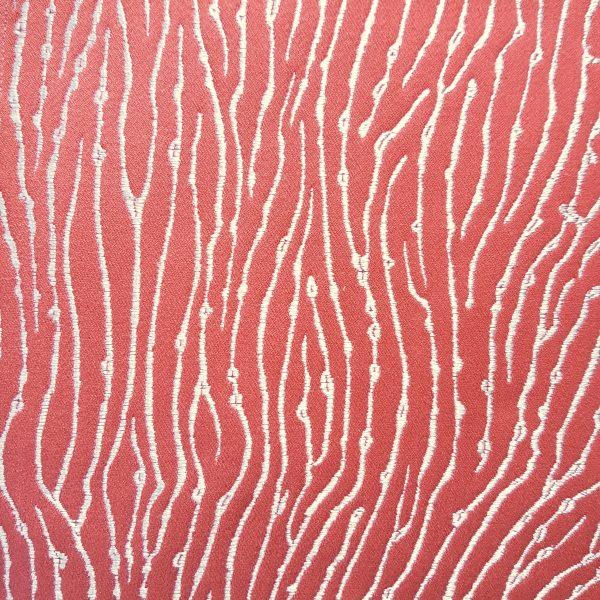 Fungia Corail coloris Corail